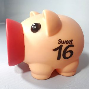 Spaarvarken - Sweet 16