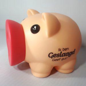 Spaarvarken - Ik ben Geslaagd Geef gul!