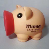 Spaarvarken - Mama's leuke dingen potje